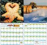 przykładowy kalendarz ze zdjęciami krajobrazów